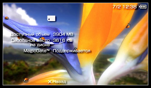 оригинальная Memory Stick Duo Pro на 4Gb (34.90КиБ)