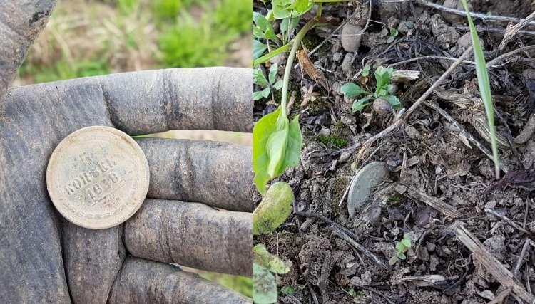 Монеты на поверхности (64.42КБ)